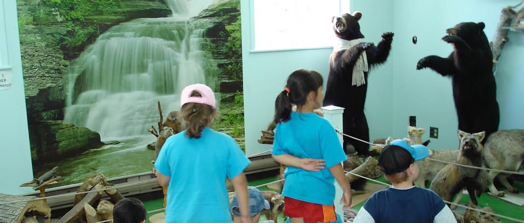 Sciences Naturelles - Activités - Camp de vacances et de plein air quatre saisons - Boute-en-Train